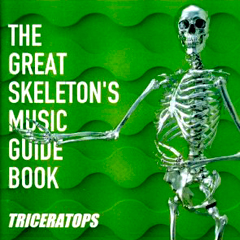 THE GREAT SKELETON'S MUSIC GUIDE BOOK